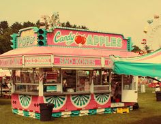 Photo by Susan Tuttle Fair Pictures, Merry Go Round, County Fair, Freeze, Carnival, Signs, Color, Carnavals, Shop Signs