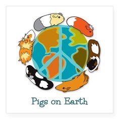 Pigs on Earth Sticker on CafePress.com