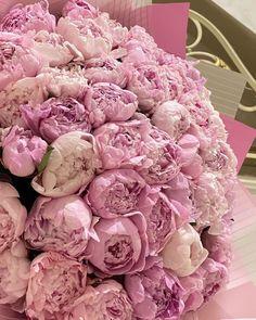 Peonies Bouquet, Heaven, Instagram Posts, Flowers, Sky, Heavens, Royal Icing Flowers, Flower, Florals