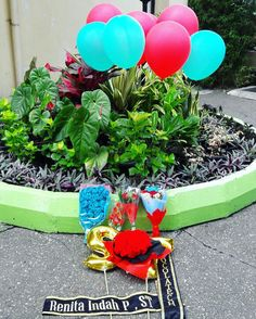 #graduation #flower #ballon