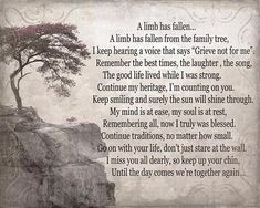A limb has fallen from the family tree, gift tor parents, Memorial Losing a father loss of a loved one quote on the wall, Lost Quotes, Dad Quotes, Words Quotes, Quotes To Live By, Sayings, Qoutes, Funny Quotes, Loss Of A Loved One Quotes, Death Of A Parent