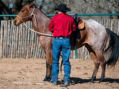 """Downunder Horsemanship 