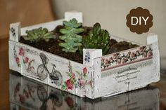 Decoupage Box, Decoupage Vintage, Recycled Crafts, Diy And Crafts, Foto Transfer, Vertical Garden Diy, Fruit Box, Vintage Shabby Chic, Garden Crafts