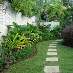 Crinum lilies and mondo grass for the sides of my home... Taken from houzz