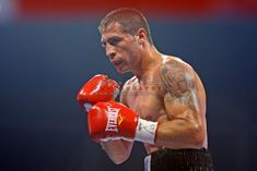 """Viorel Simion of Romania fights against Jun Talape (not in image) of Philipine during their feather weight category boxing match for WBC International title at the gala """"Champion for Romania"""" in Bucharest July Viorel Simion won by KO. Wbc, Bucharest, Romania, Boxing, Champion, Feather, Image, Quill, Feathers"""