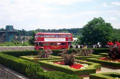 Double Decker bus tours.  photo by Alina Rashid