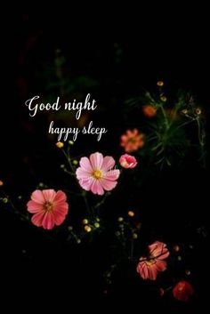 Good Evening Messages, Good Night Love Messages, Good Evening Greetings, Good Night Prayer, Cute Good Night, Good Night Blessings, Good Night Wishes, Good Night Sweet Dreams, Good Night Quotes
