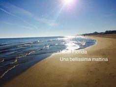 Ecco la Spiaggia e il mare in una mattina di novembre. spiaggia dell'Hotel Florida