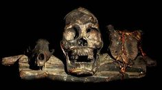 IFUGAO TRIBE: HEAD HUNTING HUMAN TROPHY SKULL  WOOD, RATTAN, ANIMAL SKULLS, HUMAN SKULL.  THE IFUGAO TRIBE, FROM THE PHILIPPINES, PLACE HEAD HUNTED  HUMAN TROPHY SKULLS OUTSIDE OF THEIR HUTS, AS WELL AS,   MOUNT THEM OVER THEIR HEARTHS INSIDE OF THEIR HOMES.