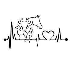 Vet Tech Dog Cat Horse Cow Heartbeat Lifeline Monitor Creative Funny Animal Car Sticker x cm) - Painting Steine - Gatos Vet Tech Tattoo, Cow Tattoo, Horse Tattoos, Dog Quotes Funny, Vet Tech Quotes, Vegan Tattoo, In A Heartbeat, Funny Animals, Dog Cat