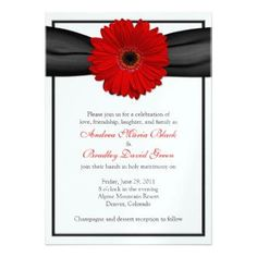 red_gerbera_daisy_black_ribbon_wedding_invitation-p161833962056562765z7php_355.jpg
