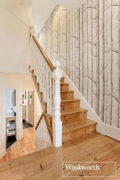 cole & sons 'woods' -- tree wallpaper for a wall or stairs Tree Wallpaper Stairs, Tree Wallpaper Bedroom, Hall Wallpaper, Birch Tree Wallpaper, Kitchen Wallpaper, Wood Wallpaper, Stair Walls, Wood Stairs, Basement Stairs