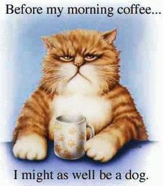 Get a Coffee Drinking Cat funny picture from Cartoons. You can get dozens of other funny pictures from Cartoons. Here are some samples of funny words: coffee, drinking, cat Coffee Talk, I Love Coffee, My Coffee, Coffee Drinks, Coffee Cups, Happy Coffee, Coffee Menu, Coffee Girl, Coffee Lovers