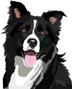 Image result for cartoon border collie