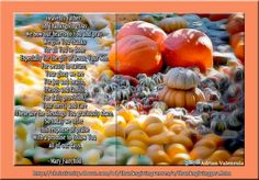 Prayers and Poems to Celebrate Thanksgiving Day Thanksgiving Poems, Thanksgiving Traditions, Heavenly Father, Special Occasion, Prayers, Christianity, Celebrities, Health, Holidays