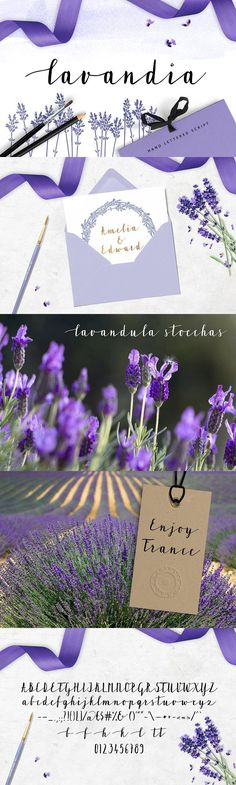 Lavandia. Wedding Card Templates
