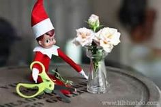 Image Search Results for elf on the shelf ideas