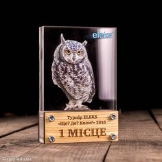 Diy And Crafts, Arts And Crafts, Trophy Design, Custom Awards, Laser Art, Photo Engraving, Pink Minnie, Visual Communication, E Design