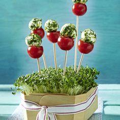Tomate-Mozzarella-Lollis Rezept | LECKER