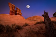 THE WATCHER by Ed Erglis - Photo 159417677 - 500px