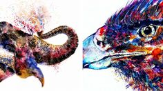 Emily Tan's vibrant creature portraits perfectly encapsulate the beauty of the animal kingdom. The colorful animal paintings or sketch-like drawings pop on