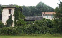 Fotografando...: Grassona, frazione di Cesara (VB)
