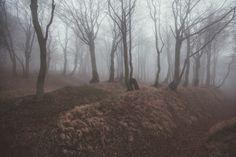 Autumn by Petr Hricko on 500px