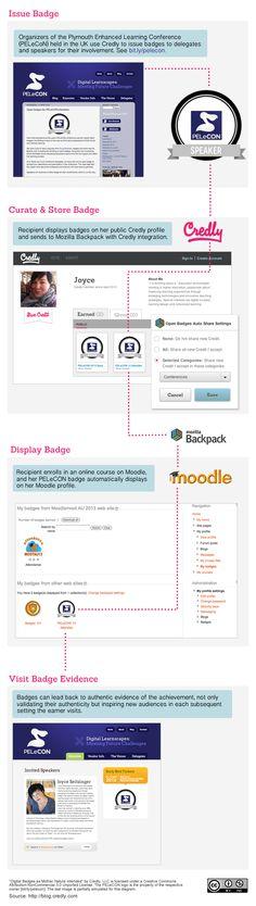 BadgeOS Dit is zo'n gaaf idee. Een badge die met je mee reist in de wereld van online leren.