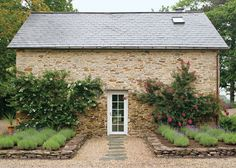 Guesthouse entry flanked by raised lavender beds and espaliered crape myrtle