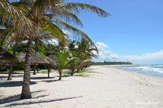 Diani Beach (Diani Beach, Kenya)