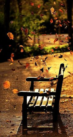 """Autumn is a second spring, when every leaf is a flower."" Albert Camus"