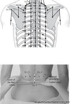 Du 6 Centre Of The Spine JIZHONG Acupuncture Points - 394x582 - jpeg