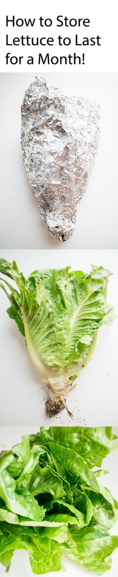 Lettuce only lasting a few days? Never again! With this easy method using aluminum foil you can store lettuce to last for a month!