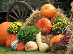 Alimentos para ser más feliz en otoño