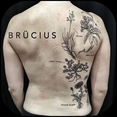 #BRÜCIUS #TATTOO #SanFrancisco #bayarea #brucius #natural #science #engraving #etchingtattoo #etchingstyletatoo #etchingwork #gravure #lineart #linespecialist #linetattoo #lineworkers #blacktattoo #blackworkerstattooist #sculptoroflines #blackworker #blackworkartist #blackwork  #black #ink #penandink  #AlpineFlowers #wildflowerstattoo