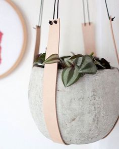 concrete pot on leather holders looks very modern