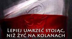 Homeland, Postcards, Polish, Poland, Vitreous Enamel, Nail, Nail Polish, Greeting Card, Nail Polish Colors
