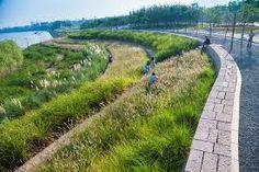 Image result for terraced parks