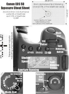 Canon 5D Spot Metering: Diagram