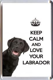 Keep calm and love your labrador