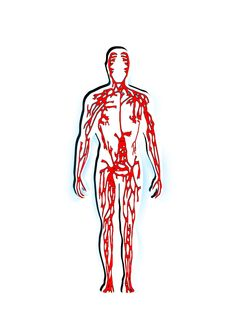 Raad wat werk vir Spatare - SA Dieet What Causes High Cholesterol, Cholesterol Levels, Menopause Age, Natural Remedies, Cancer, Ems, Protein, Life, Health