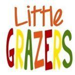 Little Grazers - recipes & ideas for BLW meals & meals for older kids.