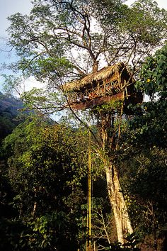 Green Magic Nature Resorts   Set in a tropical rainforest, this eco-friendly resort sits at an altitude of about 4,125 ft at the top of the Fintser Hills in southwest India