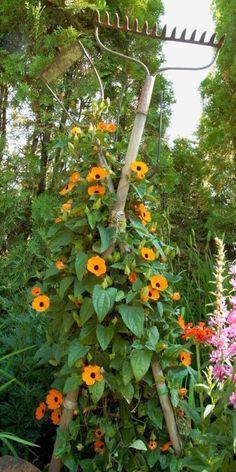 Garden Tool Shed, Garden Junk, Garden Yard Ideas, Love Garden, Garden Club, Garden Crafts, Dream Garden, Garden Pots, Garden Landscaping