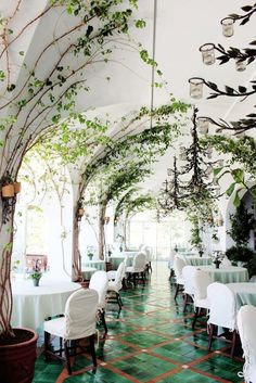Get a fancy dinner at a restaurant. [La Sponda restaurant in Positano is draped in climbing vines] Decoration Restaurant, Deco Restaurant, Restaurant Interior Design, Luxury Restaurant, Positano Restaurant, Courtyard Restaurant, Italy Restaurant, Tree Restaurant, Pub Decor