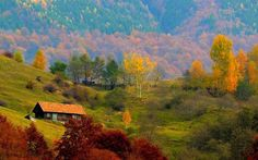 boisoara-valcea Fall Pictures, Fall Pics, Romania, Mountains, Country, House Styles, Painting, Travel, Outdoor