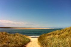 Budle Bay, Northumberland, 15 mins drive from Beadnell Kingdom Of Northumbria, Farne Islands, Country Uk, Sea And Ocean, Cumbria, Grasses, Campervan, Cottages, Beaches