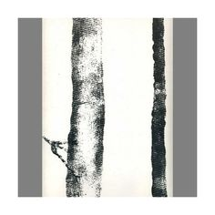 Sample of Black & White Tree Bark Velvet Flocked Wallpaper by Burke... ($10) ❤ liked on Polyvore featuring home, home decor, wallpaper, wallpaper samples, velvet wallpaper, velvet flock wallpaper, black white home decor, black white wallpaper and black and white home accessories
