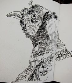 Danny Gregory - great observation and character in his sketches - this hen looks like it's wearing chainmail