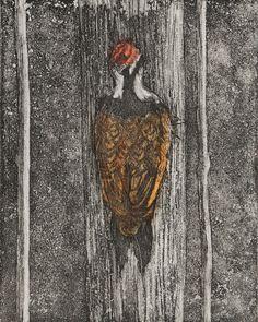 Tree hugger, Etching, aquatint, woodpecker, tree trunk, bird, red head, original print, limited edition, natural history, printmaking
